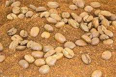 coffee powder with coffee beans - stock photo