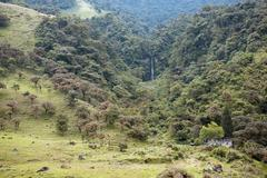 mountainside in the amazonian foothills of the andes - stock photo