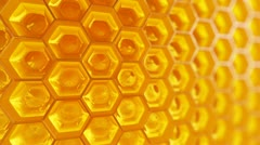 Honeycomb. Honey. Healthy Natural organic nutritious food. - stock footage