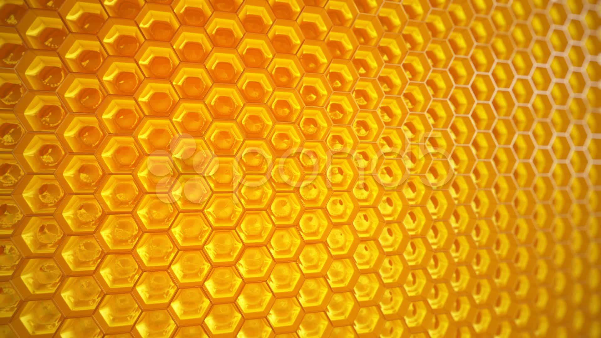 Best  Natural Honey
