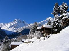 chalets in a snow white valley - stock photo