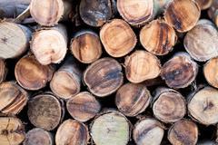 particular of lumber - stock photo
