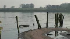 Traditional england with fence going into lake Stock Footage