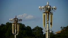 Flock of birds fly in blue sky,Surveillance cameras on street light. Stock Footage