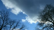 Stock Video Footage of clouds trees tl 2