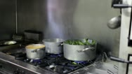 Stock Video Footage of Italian chef cooking vegetables