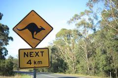 Kangaroo crossing road sign Stock Photos