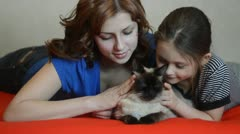 Girls stroking a Siamese cat Stock Footage