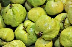 Fresh guava frui Stock Photos