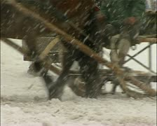 Horse sled racing in the snow - Germany Stock Footage
