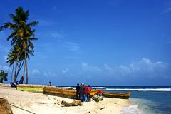 ocean  palm and tree in  republica dominicana - stock photo