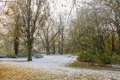 snow on the ground in hazy park - stock photo