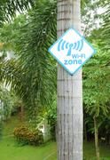 wi-fi zone sign on tree - stock photo