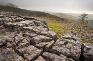 Malham dale from limestone pavement above malham cove in yorkshire dales nati Stock Photos