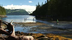Fishermen Fishing in Morning at Shotgun Cove, Whittier, AK Stock Footage