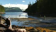 Stock Video Footage of Fishermen Fishing in Morning at Shotgun Cove, Whittier, AK