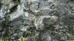 Water at stone wall Stock Footage