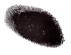 Fingerprint on White Background - stock photo