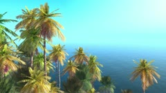 Tropical isle and Palms Stock Footage