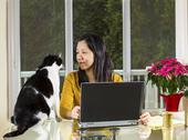 Mature woman working at home wth family cat looking at her Stock Photos