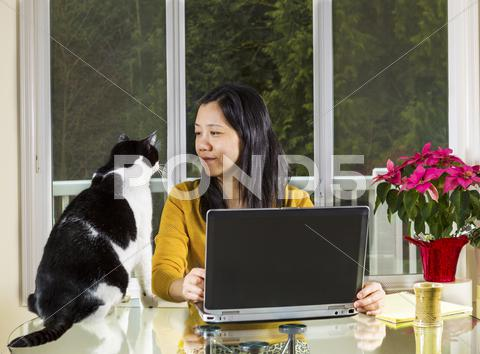 Stock photo of mature woman working at home wth family cat looking at her