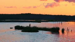 Sunset the poisoned polluted lake Stock Footage