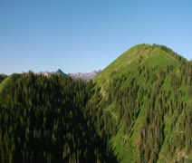 Aerial shot of green forest and mountains Stock Footage