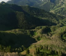 Aerial shot of green forest and mountains with trail Stock Footage
