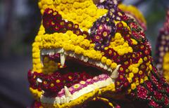 closeup flower head parade snake thailand animal - stock photo