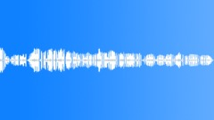 wren scolding - sound effect