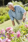 Senior man in a flower garden - stock photo