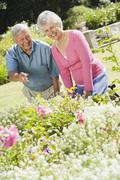 Senior couple in a flower garden - stock photo