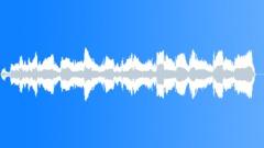 Pont depart gear changes Sound Effect