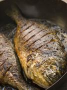 Emperor Bream Roasted with Tikka spices Stock Photos
