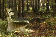 autumn color bench forest idyll in landscape - stock photo