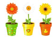 Daisies in pots with pictures Stock Illustration