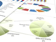 Business charts and graphs - stock photo
