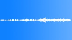 Single seagull Sound Effect