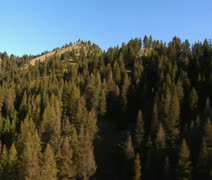 Aerial shot of forest and mountainside Stock Footage