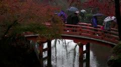Daigoji Bridge Stock Footage