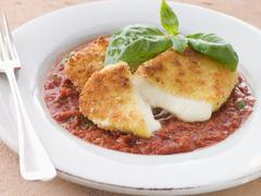 Fried Breaded Mozzarella Cheese with Tomato Ragu - stock photo