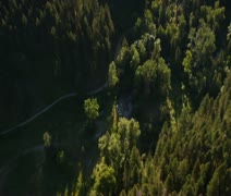 Aerial shot of forested Canyon and dam Stock Footage