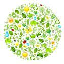 Eco globe Stock Illustration
