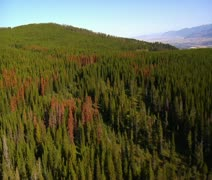 Aerial shot of forest and mountains and fields Stock Footage