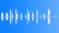 Snort hawk spit Sound Effect
