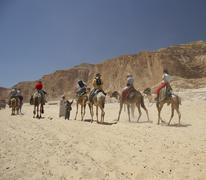 sport ain khudra desert dromedary horseback - stock photo