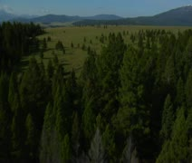 Stock Video Footage of aerial shot of open rangeland with forest and mountains