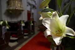 Blossom church flower decorated flowers sacral Stock Photos