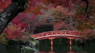 Stock Video Footage of Daigoji Bridge And Fall Colors