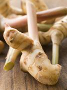 Stem of Galangal Root - stock photo
